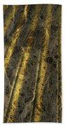 Chocolate Steel Beach Towel
