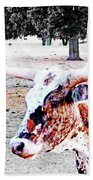 Cibolo Ranch Steer Beach Towel
