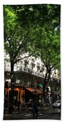 Classic Paris 3 Beach Towel