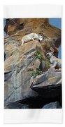 Cliffhanger Beach Towel