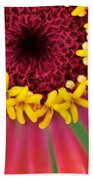 Close Up Dahlia Beach Towel