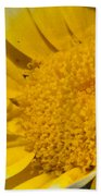 Close Up Of The Inside Of A Yellow And White Sun Flower Beach Towel