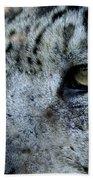 Clouded Leopard Face Beach Towel
