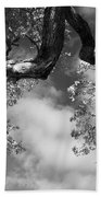 Cloudy Oak Beach Towel