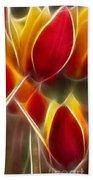 Cluisiana Tulips Triptych Panel 3 Beach Sheet