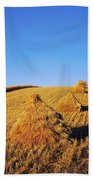 Co Down, Ireland Oats Beach Towel