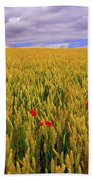 Co Waterford, Ireland Poppies In A Beach Towel