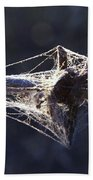 Cobwebs And Wire Beach Towel