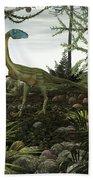 Coelophysis Dinosaurs Walk Amongst Beach Towel