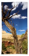 Cohab Canyon At Capitol Reef Beach Towel