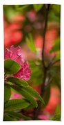 Color In The Jungle Beach Towel