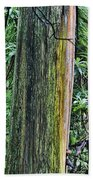 Color Of The Trees Beach Towel