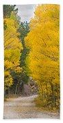Colorado Autumn Aspen Road Boulder County Beach Towel