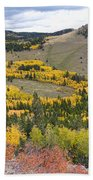 Colorado Autumn Aspens Colors Beach Towel
