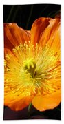 Colorado Flower Beach Towel