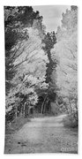 Colorado Rocky Mountain Aspen Road Portrait Bw Beach Towel