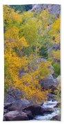 Colorado Rocky Mountain Autumn Canyon View Beach Towel