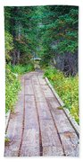 Colorado Rocky Mountain Forest Path Beach Towel