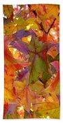 Colorful Autumn Leaves Art Prints Trees Beach Towel