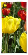 Colorful Bright Tulip Flowers Field Tulips Floral Art Prints Beach Towel