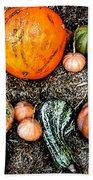 Colorful Fall Harvest Beach Towel