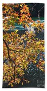 Colorful Fall Leaves Over Blue Water Beach Towel