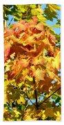 Colorful Leaf Cluster Beach Towel