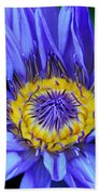 Colorful Lily Beach Towel