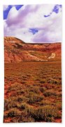 Colorful Mesas At Fossil Butte Nm Butte Beach Towel