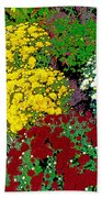 Colorful Mums Photo Art Beach Towel