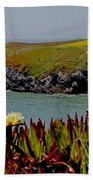 Colorful Point Beach Towel