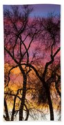 Colorful Silhouetted Trees 26 Beach Towel
