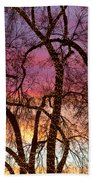 Colorful Silhouetted Trees 37 Beach Towel