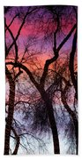 Colorful Silhouetted Trees 9 Beach Towel