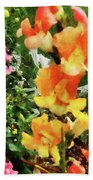 Colorful Snapdragons Beach Towel