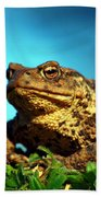 Common Toad Beach Towel