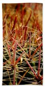 Complexity Of Nature Beach Towel