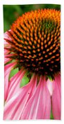 Cone Flower And Guest Beach Towel