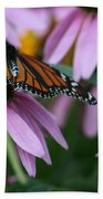 Cone Flowers And Monarch Butterfly Beach Towel