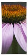 Coneflower Visitor Beach Towel