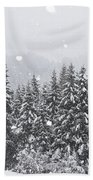 Coniferous Forest In Winter, Alps Beach Towel by Konrad Wothe