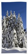 Coniferous Forest In Winter Beach Towel by Konrad Wothe