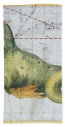Constellation Of Cetus The Whale Beach Towel