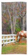 Coosaw - Outside The Fence Beach Towel