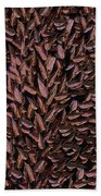 Copper Leaf Beach Towel