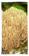 Coral Mushroom Beach Towel