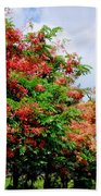 Coral Shower Trees Beach Towel