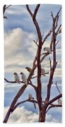 Corella Tree Beach Towel