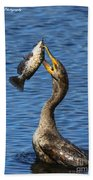Cormorant Catches Catfish Beach Towel