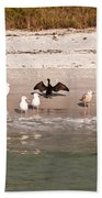 Cormorant Stands Out Beach Towel